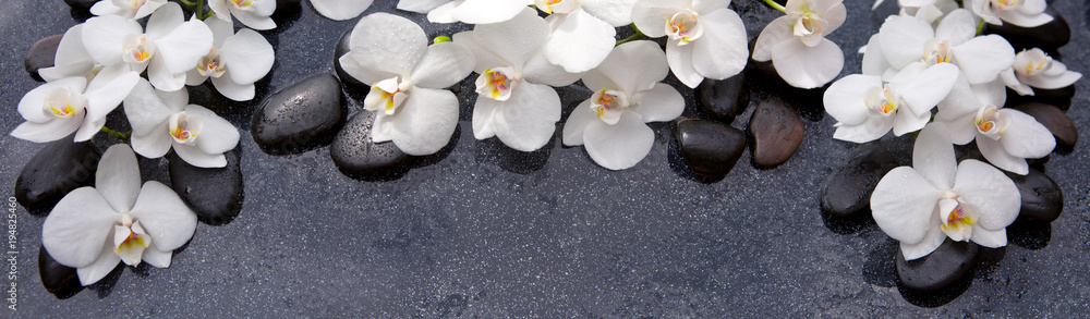 Fototapety, obrazy: Spa background with white orchid and black stones.