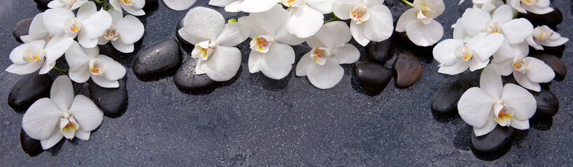 Fototapeta Storczyki Spa background with white orchid and black stones.