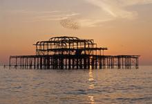Murmuration Over Brighton's We...