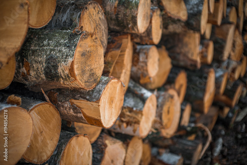 Recess Fitting Firewood texture Stack of wood