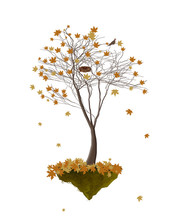 Piece Of Autumn, Autumn Tree With Yellow Leaves And Empty Bird S Nest Growing On The Flying Rock On White Background, Autumn Tree Isolated,