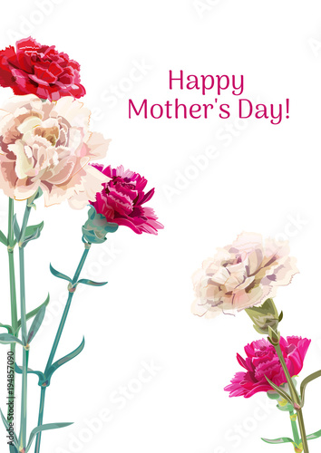 Vertical Template Card For Mother S Day With Carnation Schabaud Red