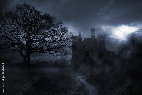 Foto op Aluminium Nachtblauw Nebellandschaft um finstere Burg