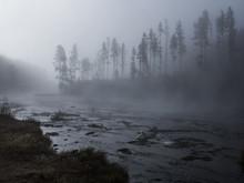 Dawn On A Yellowstone River