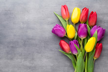 Multicolored Spring Flowers, T...