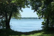 Trees Framing Lake Erie