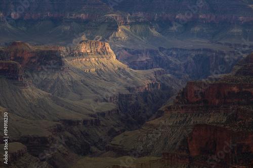 Poster de jardin Vache Grand Canyon National Park, North Rim, Arizona, USA