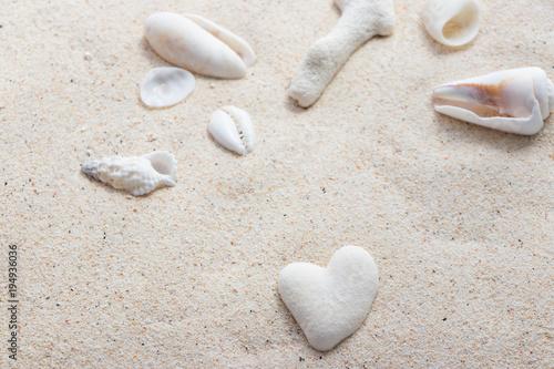 きれいな南国の貝殻とハート型のサンゴ石