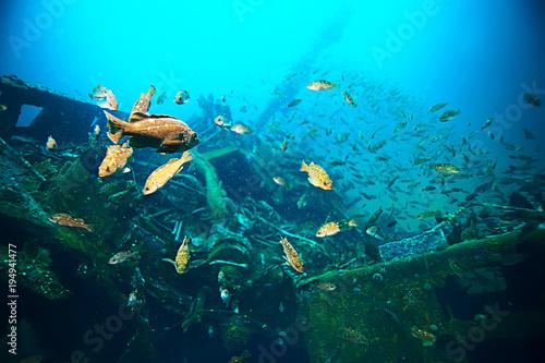 Foto op Canvas Schipbreuk shipwreck, diving on a sunken ship, underwater landscape