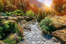 Hiking Path Through Samaria Go...