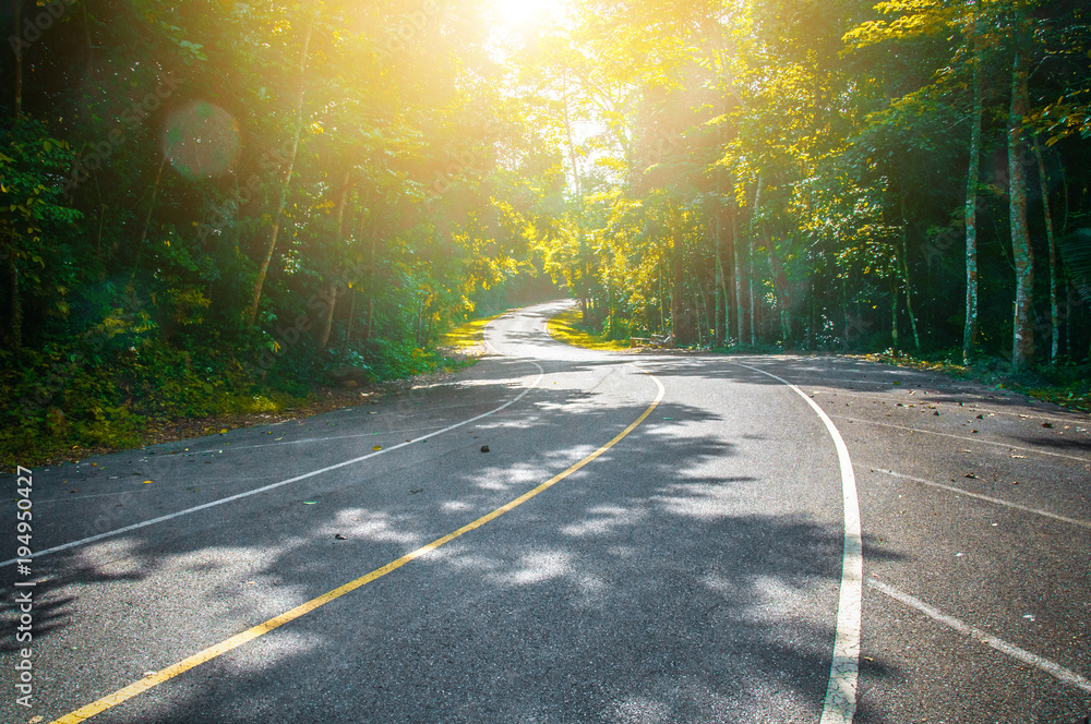 Fototapety, obrazy: Close up road view of yellow center lines