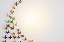 Magical Butterfly Arrangement ...