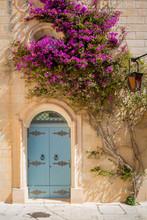 Door And Flower