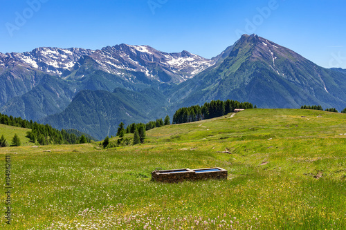 Foto auf Leinwand Gebirge View of green alpine meadow and mountain ridge on background in summer in Piedmont, Northern Italy.