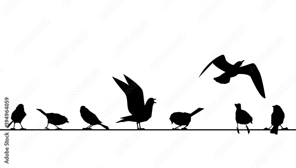 Pierzaste leżą na drutach. Wektorowe sylwetki ptaki odizolowywający na białym tle.