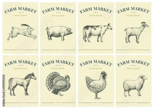 Fototapeta Labels with farm animals. Set templates price tags for shops and markets of organic food. Vector retro illustration art. Hand drawn animals. obraz