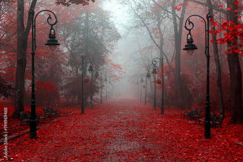 Poster de jardin Rouge mauve Beautiful autumn in red colors