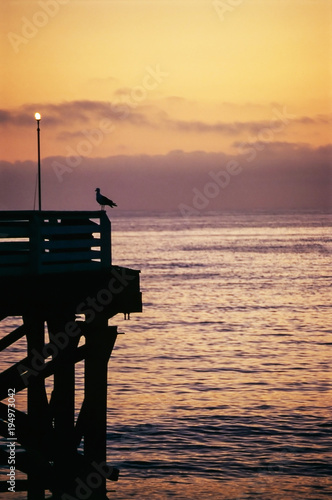 Evening on pier Poster
