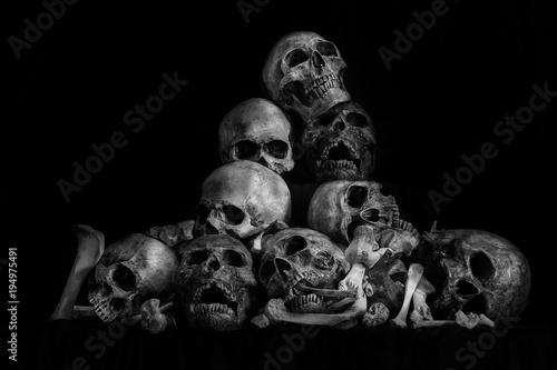 Pile of skulls and bone on dark background / Still life style Wallpaper Mural