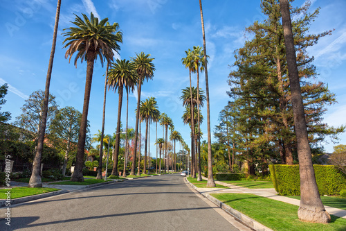 Beverly Hills street with palm trees, Los Angeles
