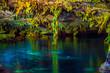 Leinwanddruck Bild - Озеро в пещере, сеноты Мексики