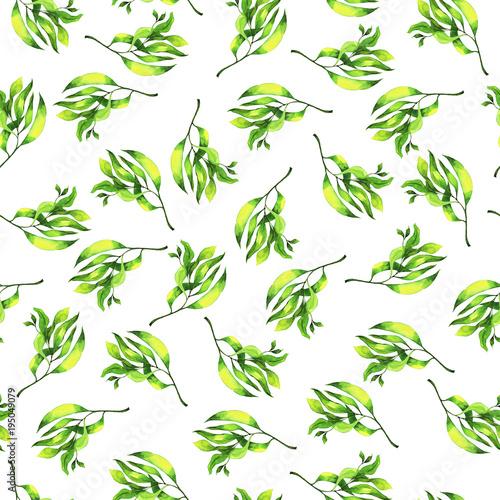 z-wzorem-malych-zielonych-galazek-lisciastych-malowanych-akwarela