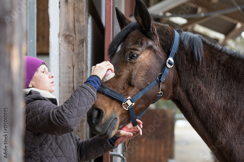 woman com the head of a horse - Buy this stock photo and