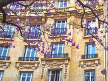 Paris. Typical Architectural D...