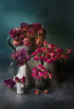 Vases Of Dried Roses