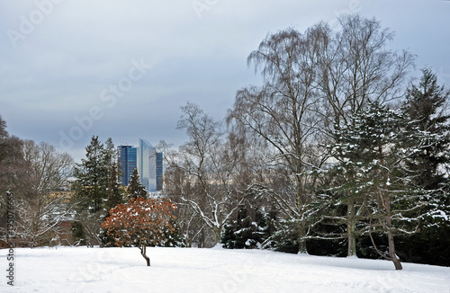 Botanical garden in winter with Oslo city in background. Poster