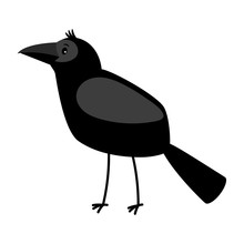 Raven Cartoon Bird Icon