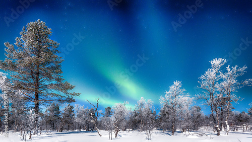 Poster Noorderlicht Aurora Borealis over winter wonderland scenery in Scandinavia