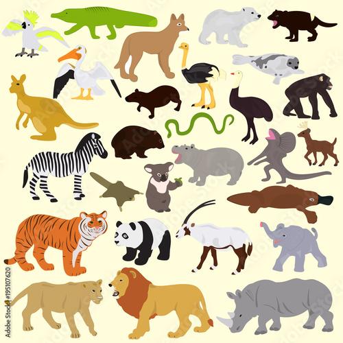 Obraz na plátně Collection of different animals on a light background