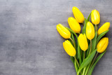 Fototapeta Tulipany - Yellow spring flowers, tulip on a gray background.
