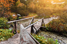 Wooden Footbridge Across Strea...