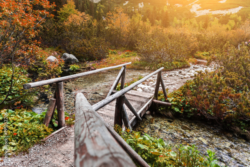 Canvas-taulu Wooden footbridge across stream in the mountain forest, High Tatras