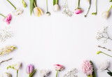 Fototapeta Kwiaty - Flowers on a white background.