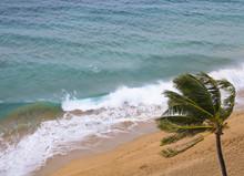 Waves Break On Windy Beach Wit...