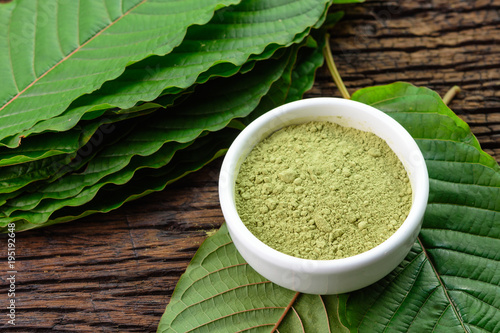 Photo  Mitragynina speciosa or Kratom leaves with powder product in white ceramic bowl