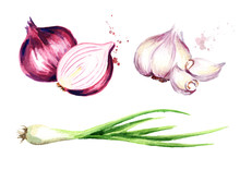 Onion, Green Chive And Garlic ...