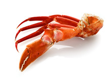 Red King Crab Legs Isolated
