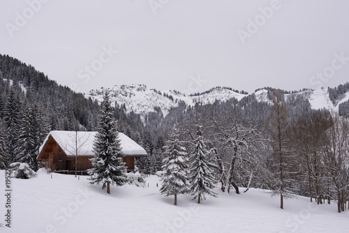 un chalet de montagne Fototapet