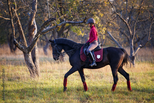Fotografia  Young rider girl on bay horse in the autumn park at sunset