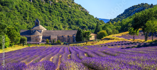 Poster Europa Blooming lavender field in Senanque abbey, Provence, France