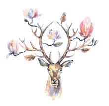 Watercolor Illustration. Isolated Deer Head With Beautiful Flowers On The Horns.