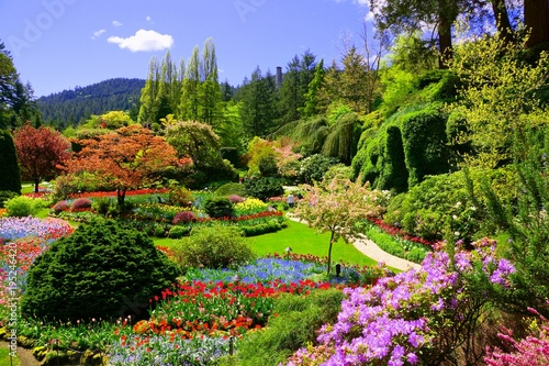 Photo Stands Garden Butchart Gardens, Victoria, Canada. View of the colorful flowers of the sunken garden during spring.
