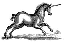 Unicorn In Side View Jumping I...