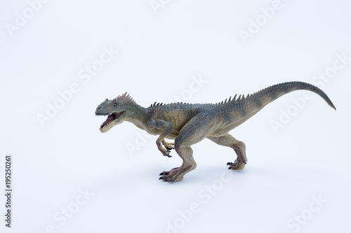 Fotografie, Obraz  Allosaurus dinosaur roaring and in attack position with white background