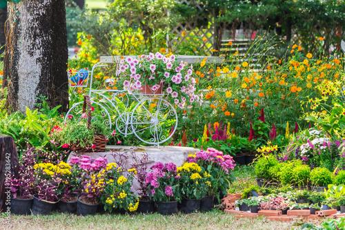 Foto op Aluminium Tuin In cozy home garden on summer./ Vintage white bike and flowerpot in cozy home flowers garden on summer.