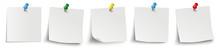 5 White Sticks Colored Pins Header